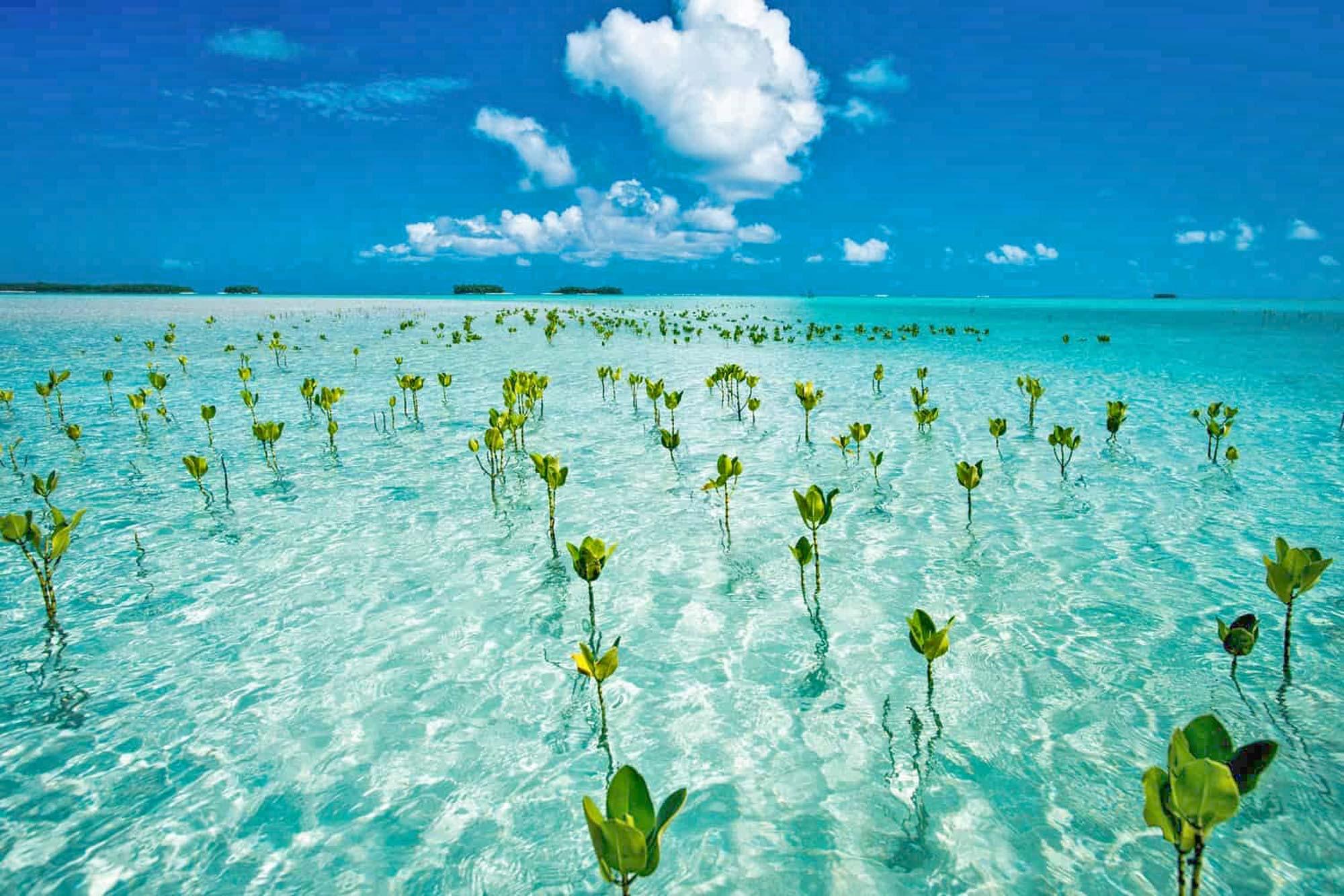 Tuvalu otočna država u Tiho oceanu