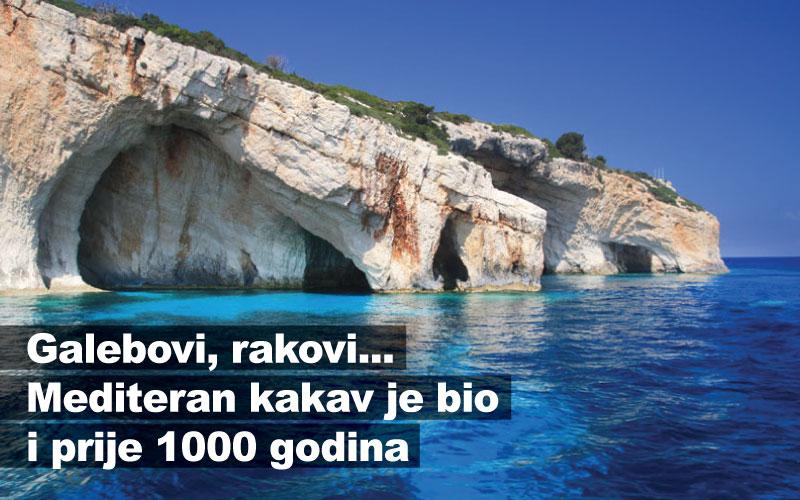 Galebovi, rakovi... Mediteran kakav je bio i prije 1000 godina