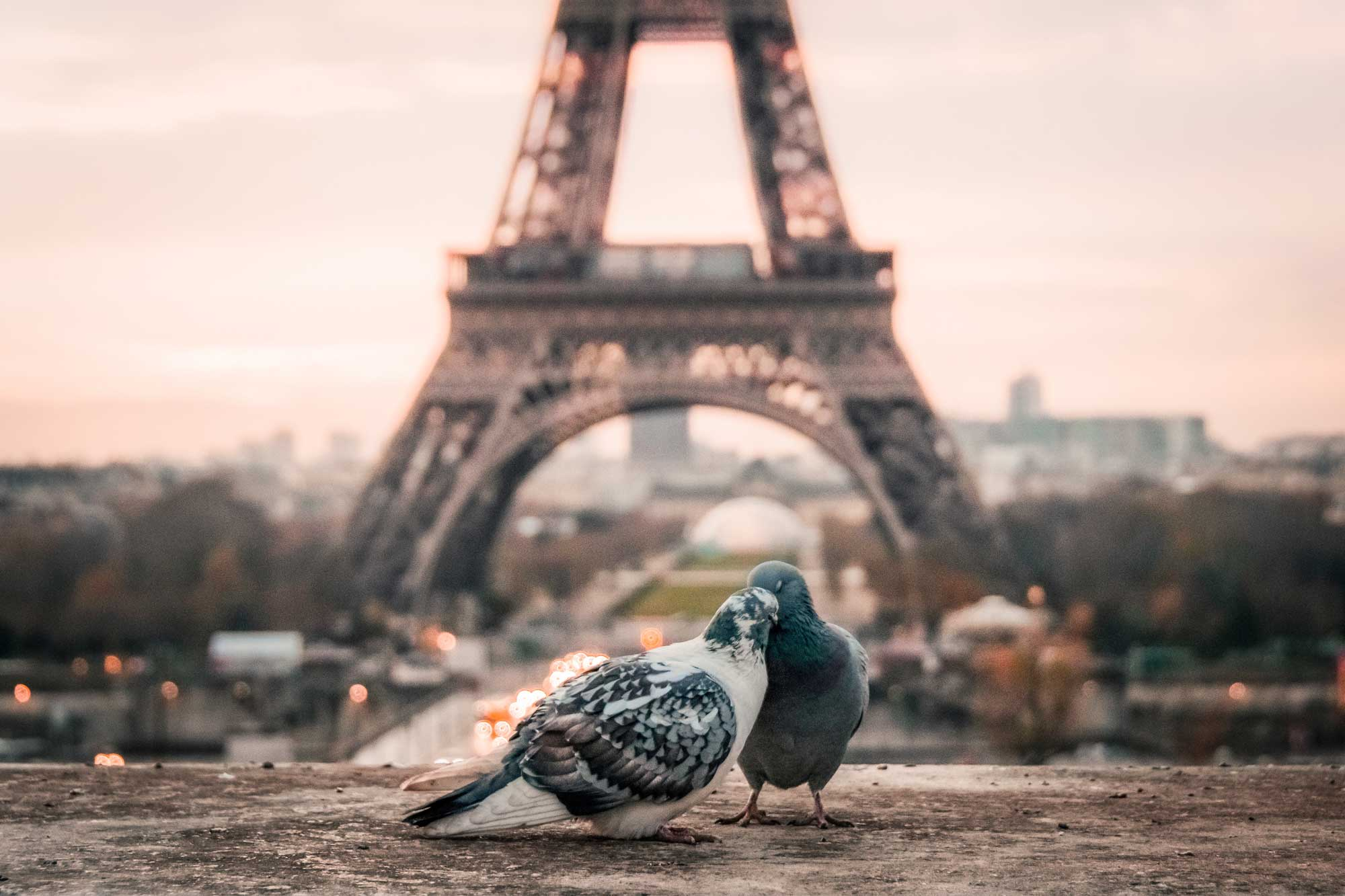 Zabrana Airbnb Pariz