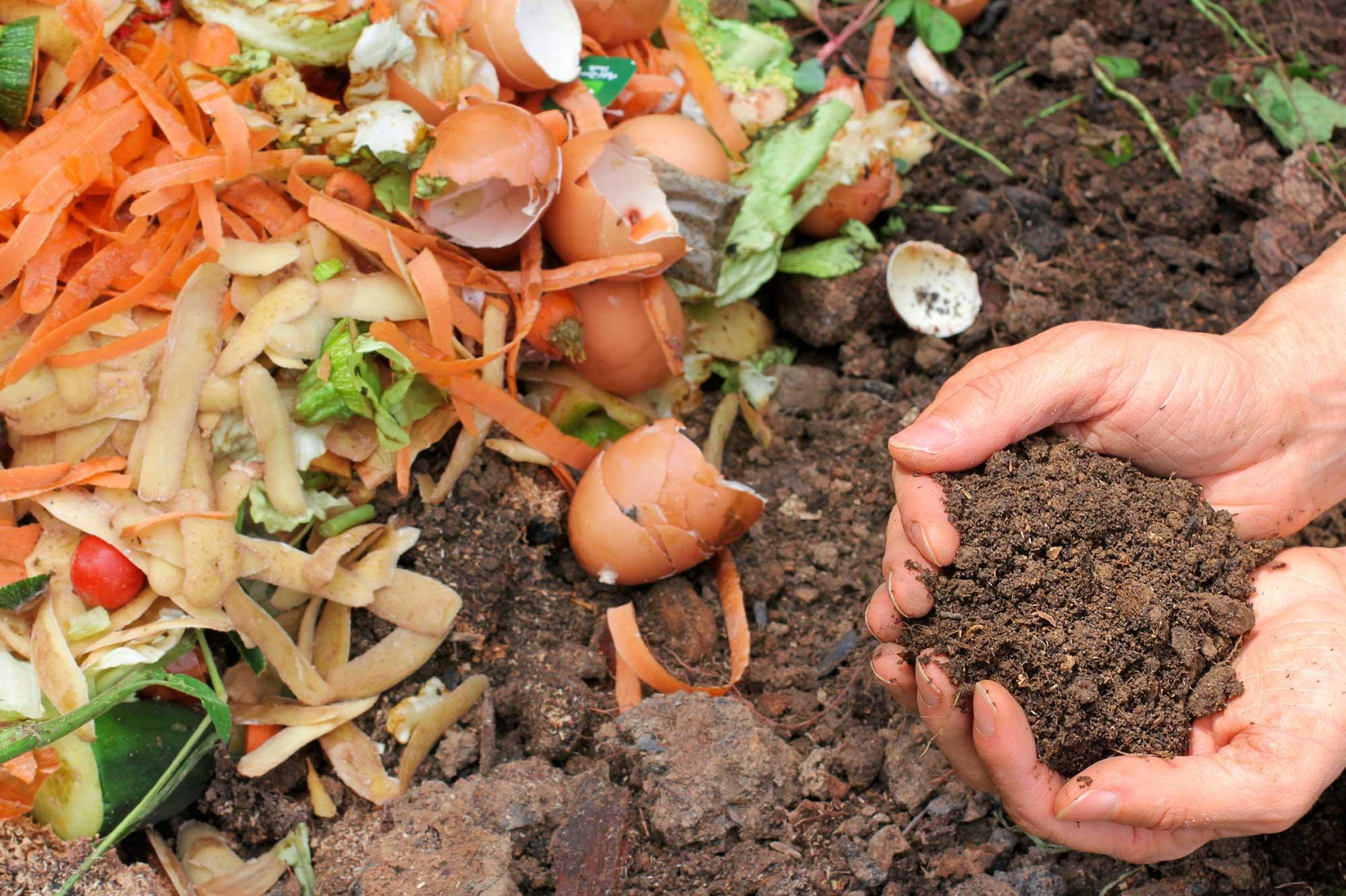 Kako napraviti kompost