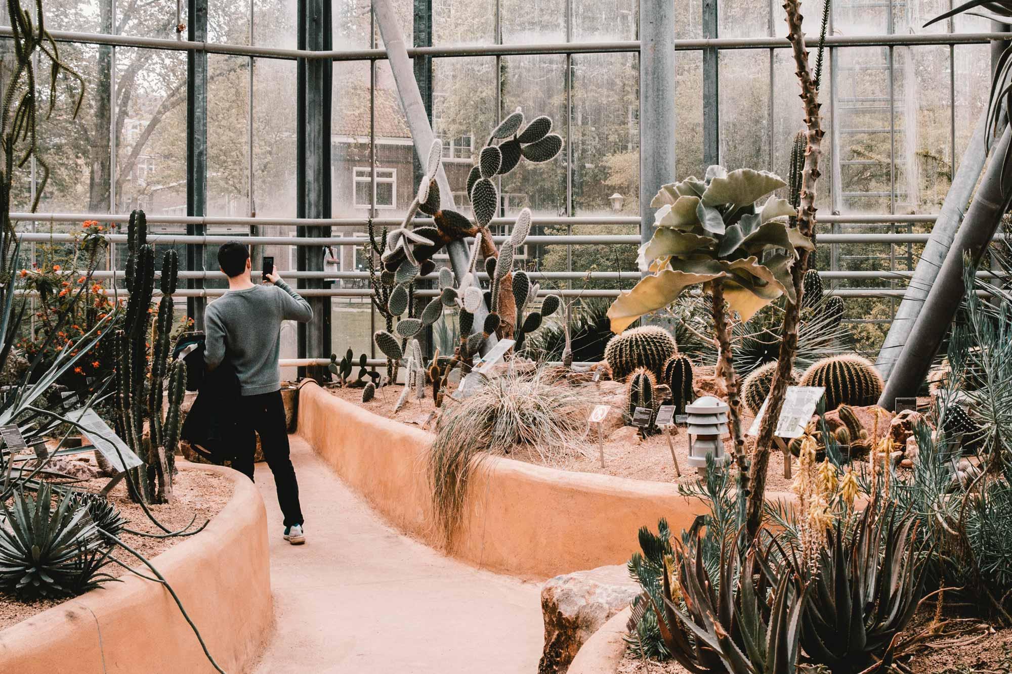 Botanički muzej u Amsterdamu