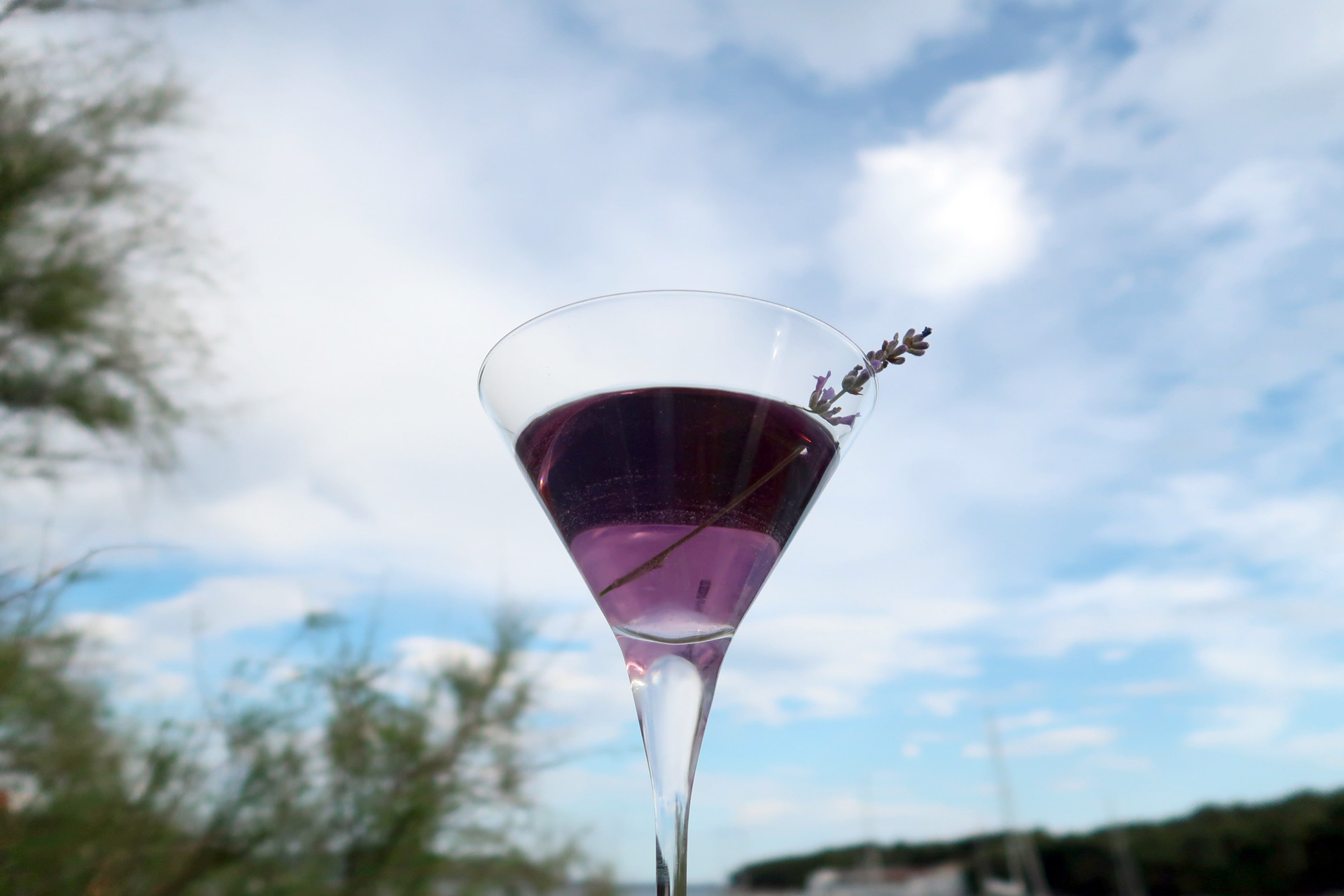 Lavanda Martini